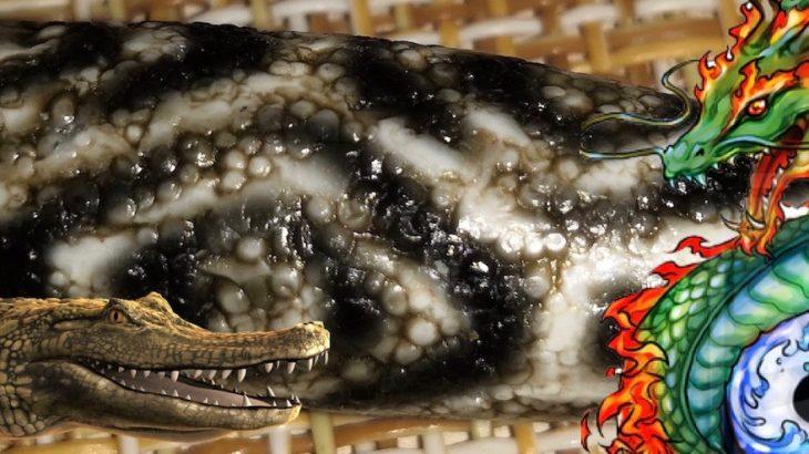 "Dzi bead Dragon Eyes - ""reptile"" series"